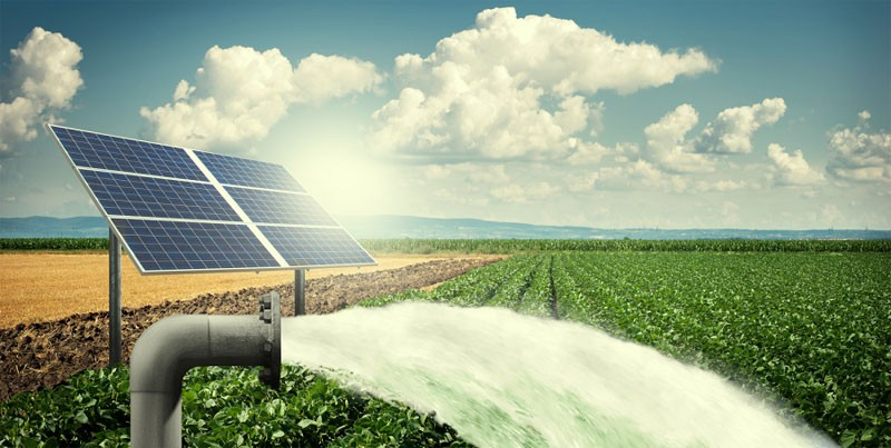 How to Choose the Best Solar Water Pump